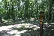 Photo: 075, Lacey-Keosauqua Campground