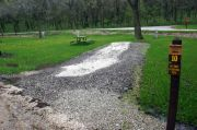 Photo: 010, Springbrook Campground