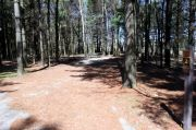 Photo: 002, Maquoketa Caves Campground