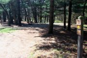 Photo: 015, Maquoketa Caves Campground