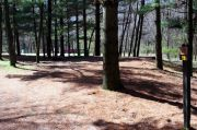 Photo: 019, Maquoketa Caves Campground