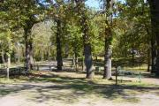 Photo: 013, Gull Point Campground