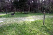 Photo: 041, Lick Creek Unit: Lower Campground