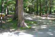 Photo: 013, Pikes Peak Campground