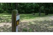 Photo: 006, Lucas Primitive Campground